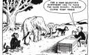 Leraren bewijzen zichzelf en hun leerlingen een slechte dienst