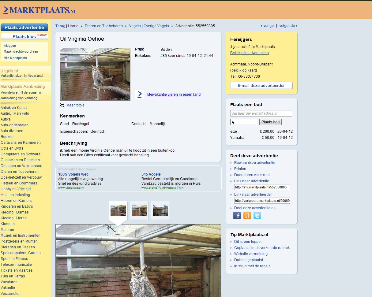 Marktplaats Dieren Related Keywords & Suggestions - Marktplaats Dieren ...