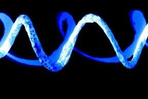 DNA - Mark Cummins