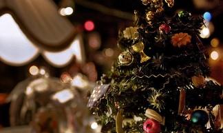 .christmas tree - Barbara Piancastelli