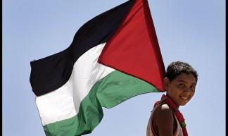 Israel & Palestine - Rusty Stewart