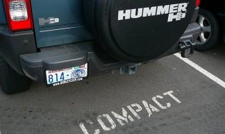 Hummer - Elf Sternberg