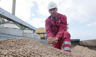 Biomassa: houtpellets - EssentNieuws