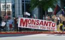 Protesteren tegen Monsanto
