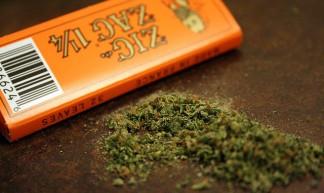 weed - Frank