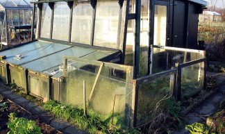 """new"" greenhouse and shed! - Ard Hesselink"