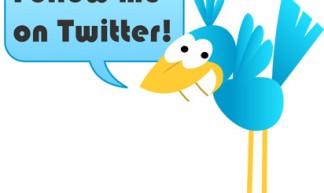 Twitter Bird - Fanie!