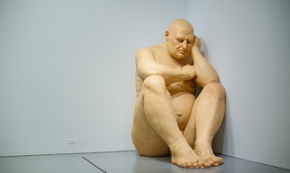 Ron Mueck's 'Big Man' at the Hirshhorn Museum - Shawn Hoke