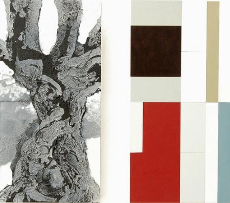 © René Ziedses des Plantes tree structural 4