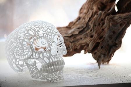 cc Flickr jared photostream Joshua Harker crania anatomica filigre