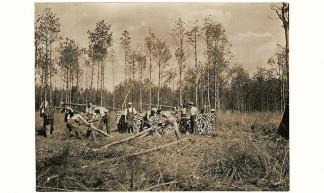 1937 Werkverschaffing in het bos - Herman van den Bossche