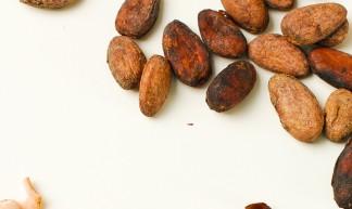 Fresh Cacao from São Tomé & Príncipe - Everjean
