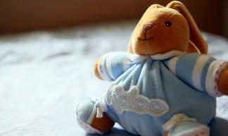 Morgan's Favorite Toy: KALOO Rabbit - Mickey_Liaw