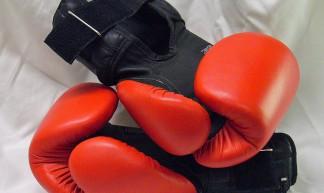 boxing gloves - Julia Manzerova