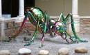 Kunst op Zondag | Mieren