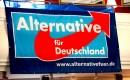 Is de Alternative für Deutschland (AfD) populistisch radicaal rechts?