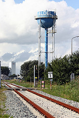 Aldel (Eigenberg Fotografie)
