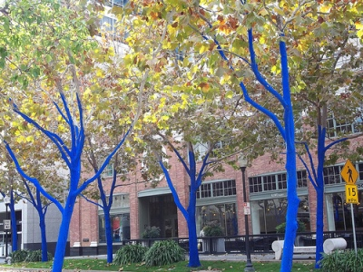 cc Flickr Janice Marie Foote photostream Blue Trees in Day - The Blue Trees Project Konstantin Dimopoulos
