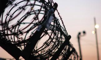 Border Fence - chuck holton