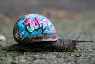 cc Flickr superk8nyc photostream graffiti snail
