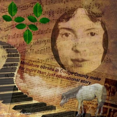 cc Flickr June Yarham photostream Michelle Caplan 2