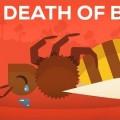 Filmpje vat goed de laatste inzichten samen rondom de sterk toegenomen sterfte van…