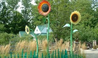 Plastic sunflowers - Betty B