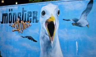 Killer Seagulls - Marc Roberts