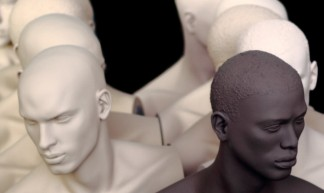 silent diversity - DryHundredFear