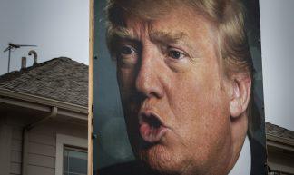Donald Trump Backyard Portrait Sign - West Des Moines, Iowa - Tony Webster