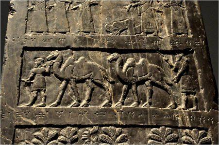 Fragment van de Zwarte Obelisk van Salmanasser III (835 v. Chr.). De koning van Musri (een koninkrijkje in Iran) brengt kamelen als tribuut. Bron: http://www.ancient.eu/image/2487/
