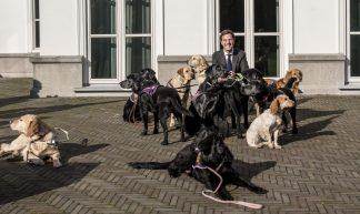 Minister-president Rutte bij het Catshuis - Minister-president Rutte
