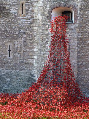 cc Flickr B fallen angel photostream Installation at the Tower of London