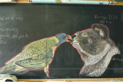 cc Flickr andres musta photostream chalk drawing Koala parrot, 2004.