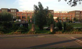 Houses in Bospolder, Rotterdam - Philip Mallis