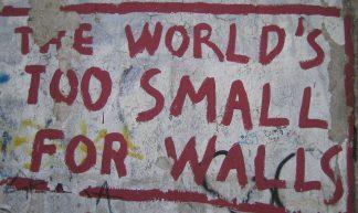 Berlin wall - pollenoid