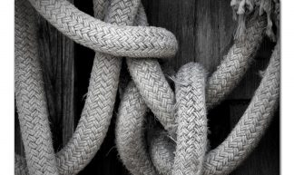 Gordian Knot - Ashwin Mudigonda