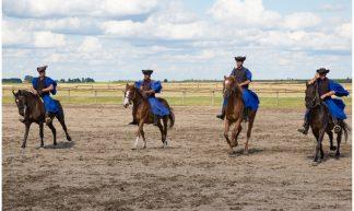 Bakod Puszta Horse Farm, Hongaarse Paarden Show, Kalocsa, Hongarije ... - Martha de Jong-Lantink