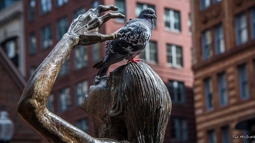 cc Flickr Ted McGrath photostream 2017 - Boston - Rat of the Sky on Bronze - Irish Famine Memorial