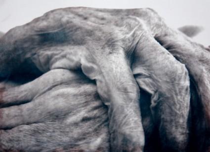 © Margriet Luyten Ella - handen 2002 - 2005