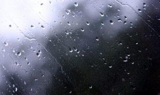 Project 365 #129: 090511 Beautiful Rain - Pete