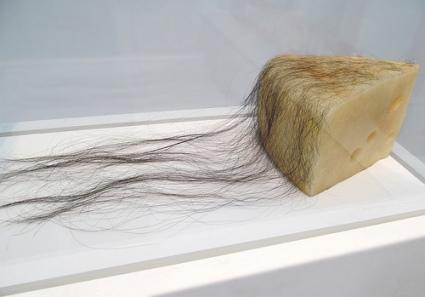 cc Flickr rocor photostream Robert Gober Long Haired Cheese, 1992. Beeswax and human hair. LACMA