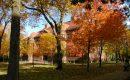 Hoe we van de universiteit weer een intellectuele werkplaats kunnen maken