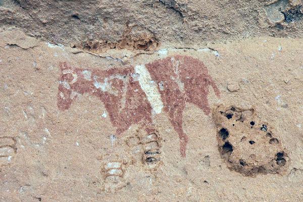 Schildering van een paard (Wadi Imla; (c) Livius.org))