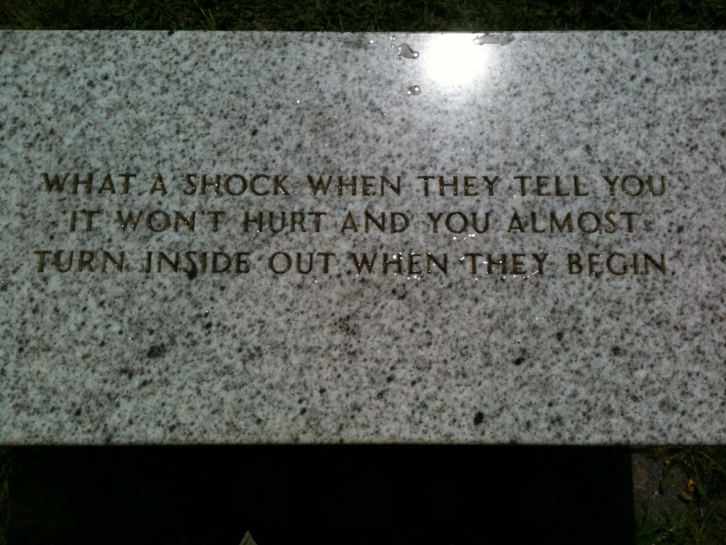 cc Flickr joshdbrown Selections From the Living Series - Jenny Holzer 2