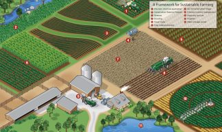 A Framework for Sustainable Farming Infographic - United Soybean Board