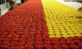 Ever Seen 50,000 Cupcakes??? - Cupcake Queen