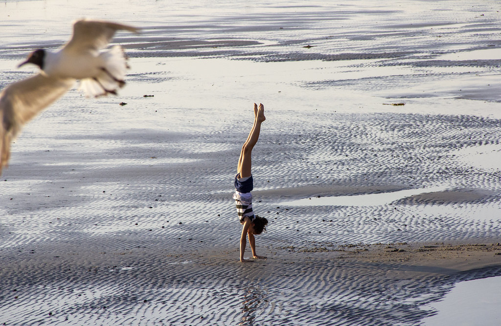 cc Flickr Maria Willems photostreanm Wimereux strandhandstand