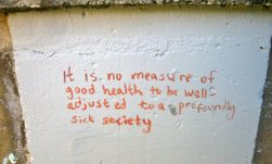 """it is no measure of good health to be well-adjusted to a profoundly sick society"" - david silver"