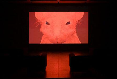 DREAMLIFE 2020 Jerry (videostills) © Melvin Moti
